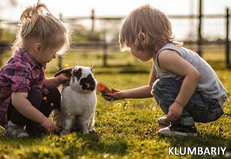 Насколько твой ребенок любит животных?